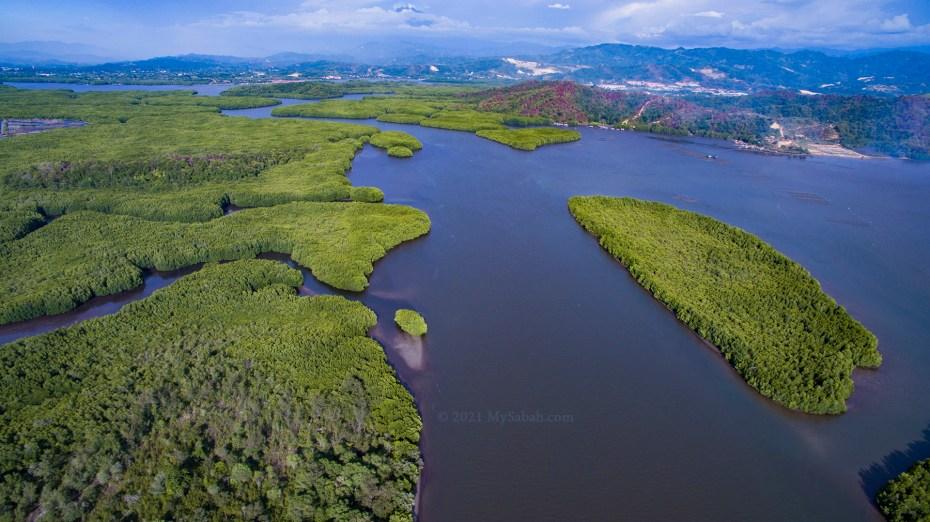 Brackish water and mangrove of Mengkabong River