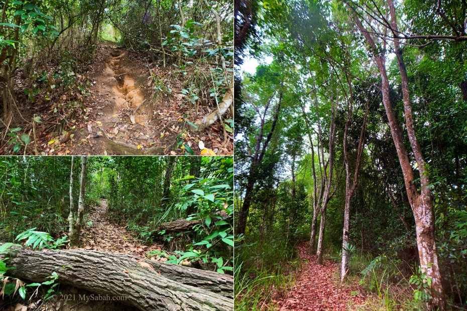 The hiking trail of Nuluh Lapai