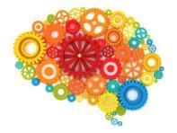 neuropsychological