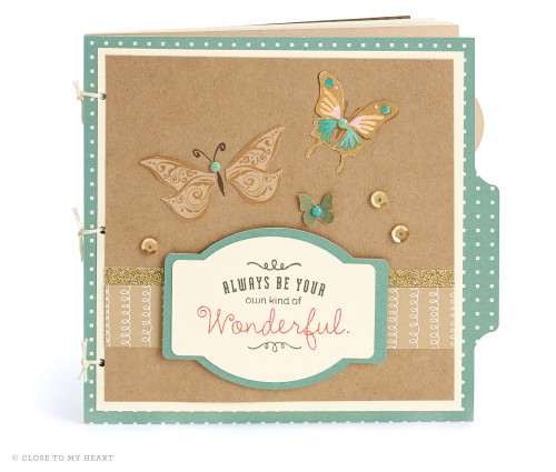 15-ai-wonderful-butterfly-book