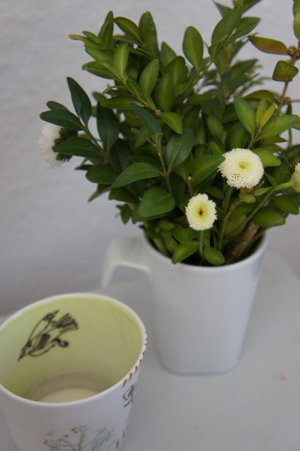 Blumendekoration  myshoppingbag