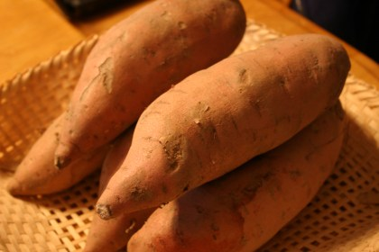 sweet potatoes for thanksgiving casseroles