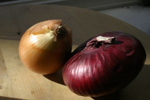 Onions for Thanksgiving  turkey stuffing