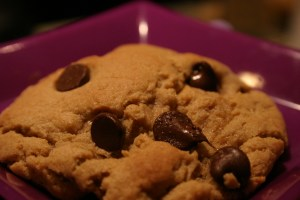 plump chocolate chip peanut butter cookie