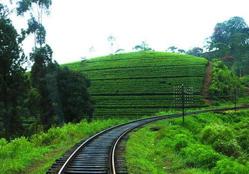 Badulla Central Highlands of Sri Lanka