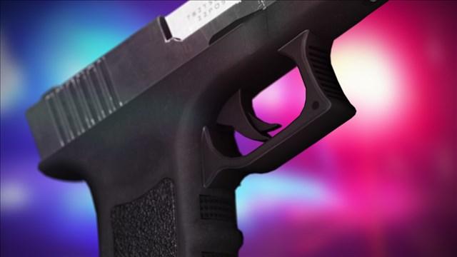 Gun Arrest_1489159266546.jpg