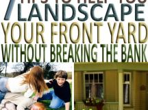 7 Tips to Help You Landscape Your Front Yard This Season