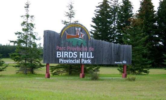 Manitoba government adjusts provincial parks operations amid COVID ...