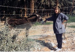 Paivi has a love for animals. Here she is giving a donkey a treat in a date palm grove near the Dead Sea.