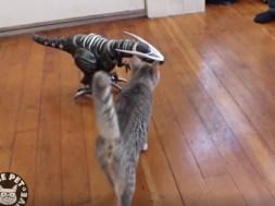 Ζώα εναντίον μηχανών