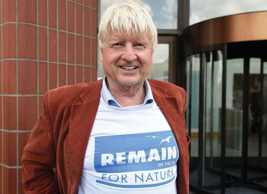 stanley johnson brexit thriller
