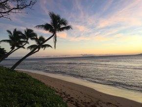 Review of Kihei Past Perfect A Hawaii Mystery By Alvin Koo
