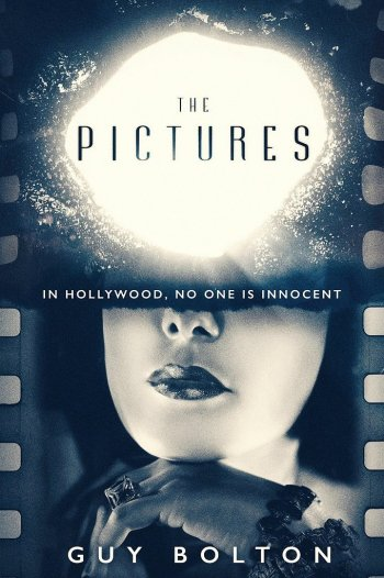 The Pictures guy bolton best mystery and thriller book covers 2017
