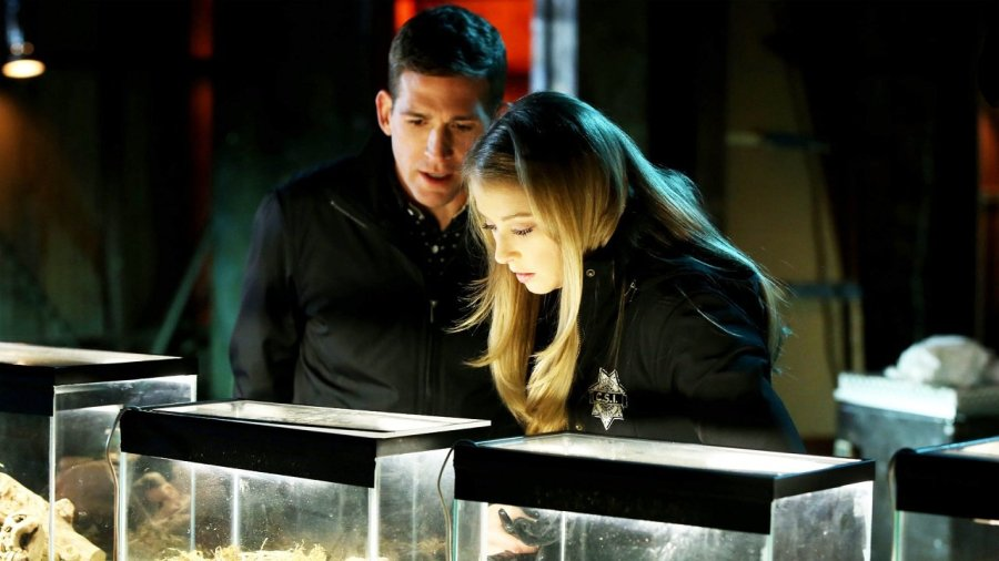 CSI Crime Scene Investigation Becomes The Most-Watched Show Again