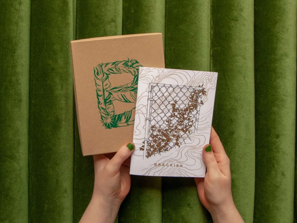 """Brackish"" boxed set showing custom letter B box and risograph zine cover with golden vines on a chain link fence"