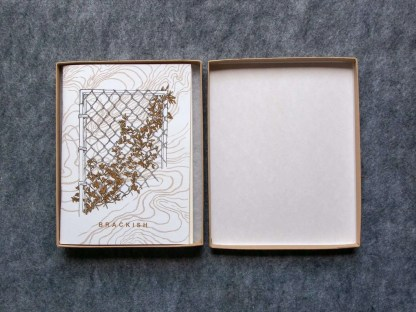 "Photo of ""Brackish"" boxed set with the box open and the zine cover with golden vines on a fence visible"