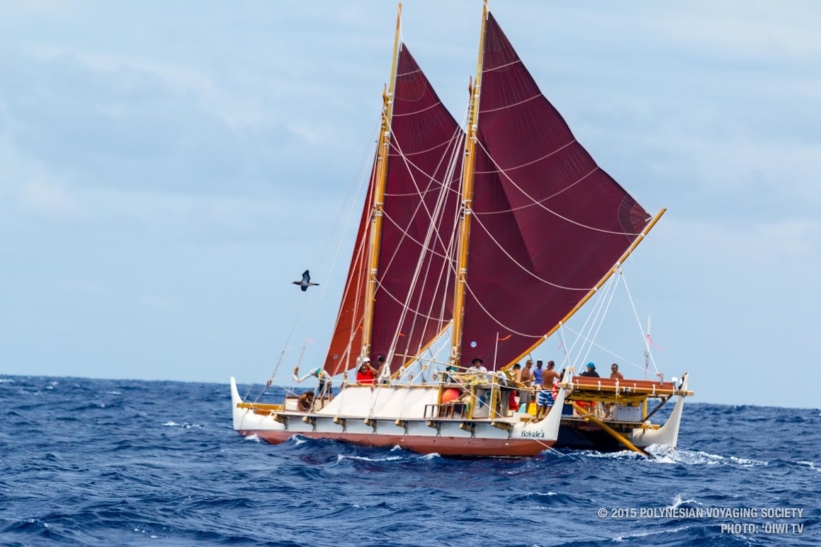 Image result for hokulea images