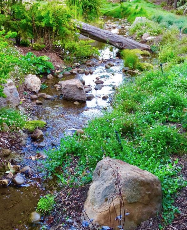 natural stream and pond assisted