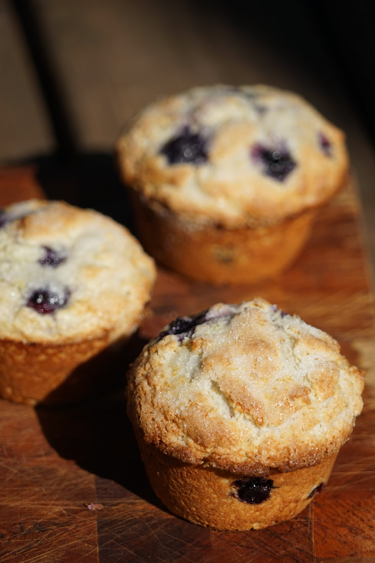 Lemon Blueberry Muffins  My Story in Recipes