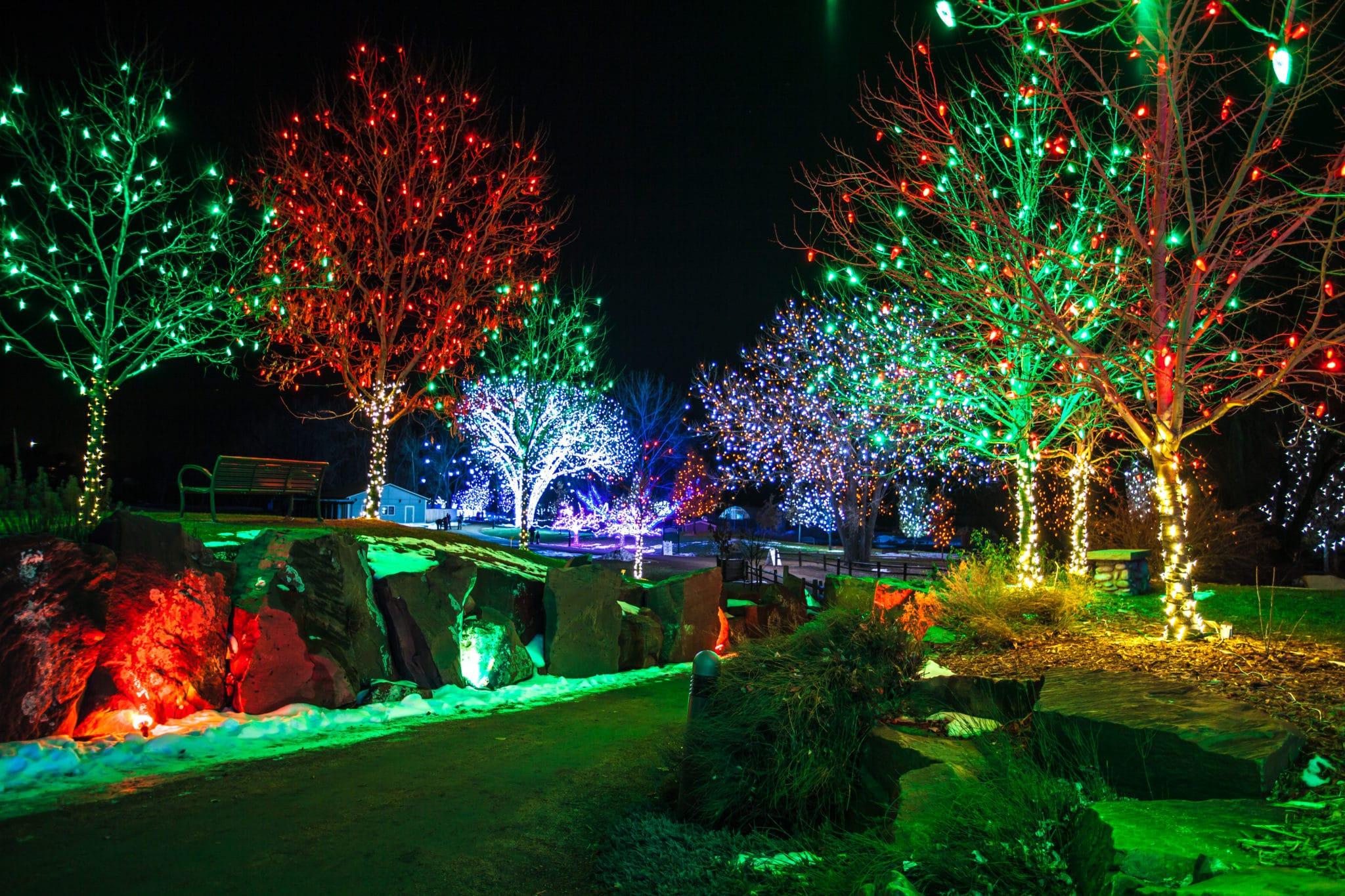 Modern Hudson Gardens Lights Adornment   Garden Design And .
