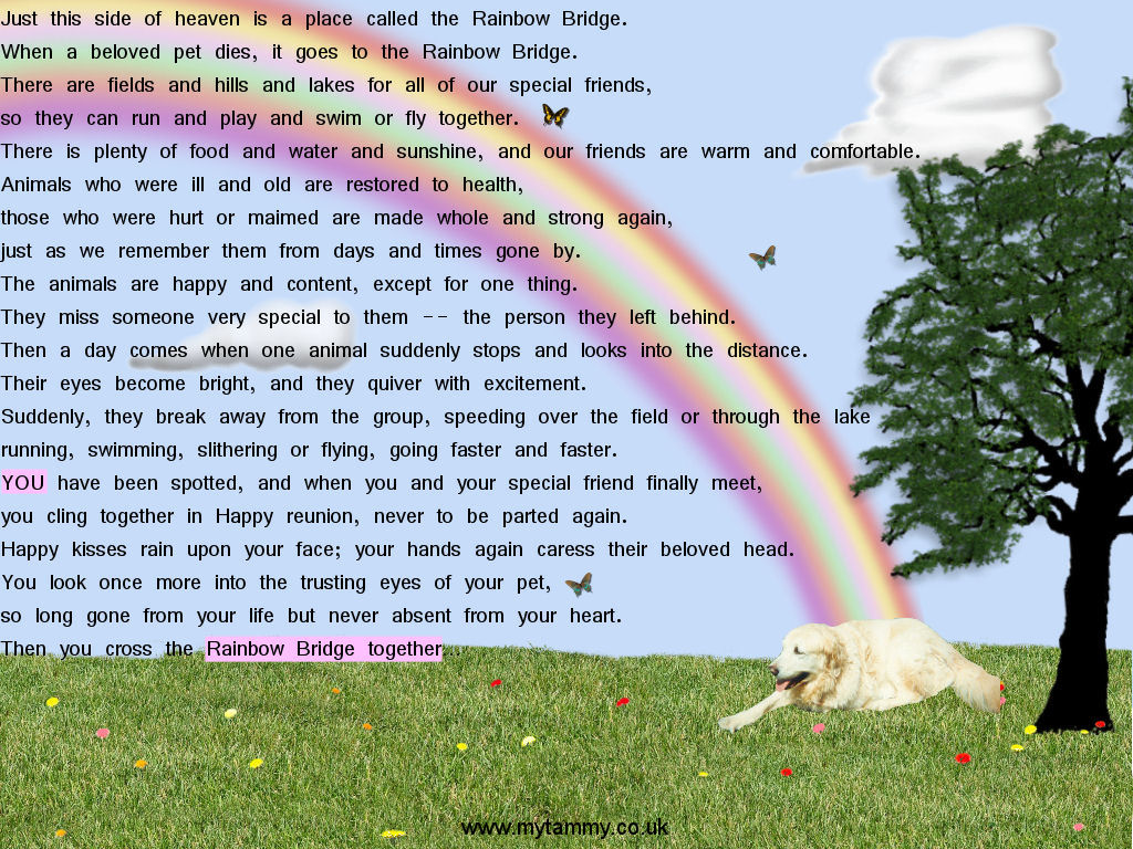 Dogs Printable Rainbow Bridge Poem