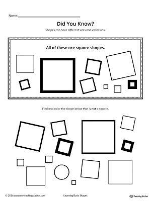 Geometric Shape Sizes And Variations Square
