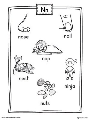 Letter N Word List with Illustrations Printable Poster