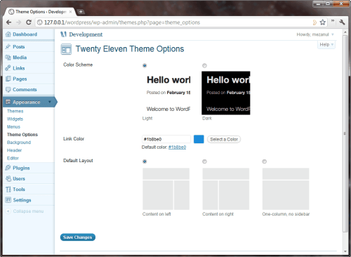 WordPress 3.2 Twenty Eleven Theme options