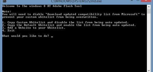 Windows-RT-Whitelist-Flash-Tool
