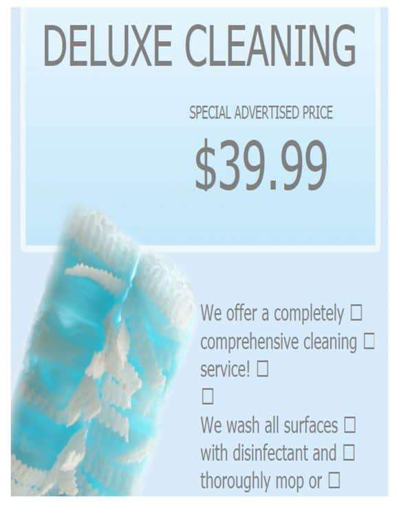 DELUXE CLEANING SERVICE FLYERS