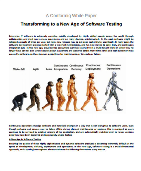 Software Testing White Paper
