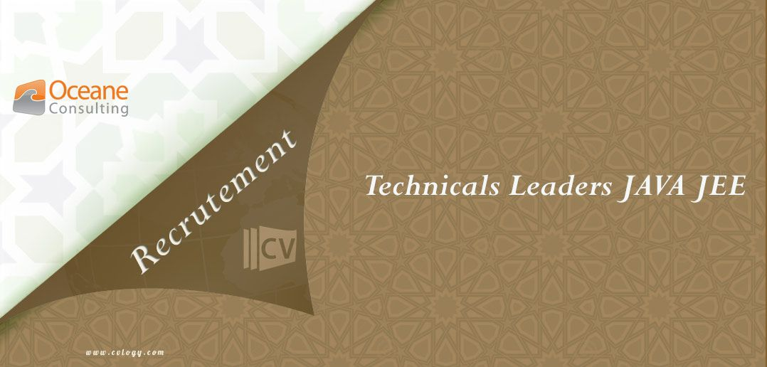 Oceane Consulting Recrutement des Technicals Leaders JAVA JEE