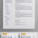 Need Help with Resume Of Resume Cv