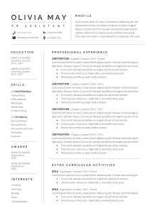 Resume Template Professional Free Download Of