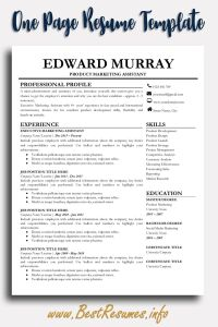 Resume Template Professional Of Professional Resume Template Edward Murray Bestresumes