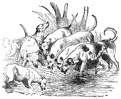 Aesop's Fables, illustrated by Tenniel and others