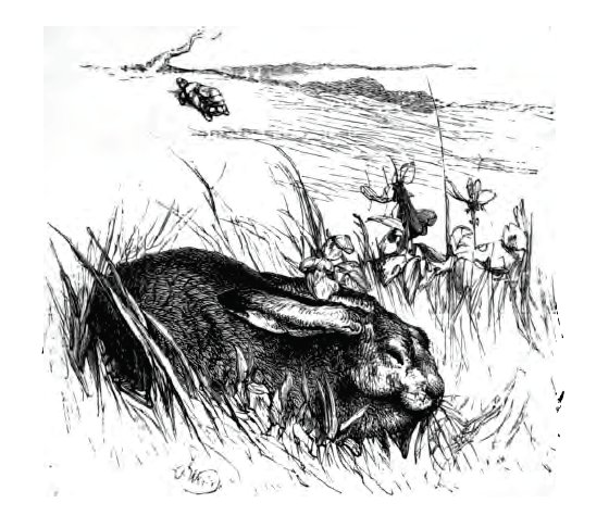 Townsend 18. The Hare and the Tortoise