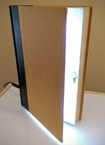 Book lights up just by opening it. It makes a nice reading lamp or mood lamp.