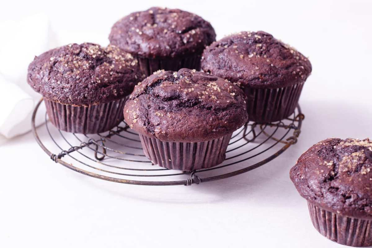 Straight on shot of Chocolate Muffins with chocolate chips on a wire rack on a white surface.