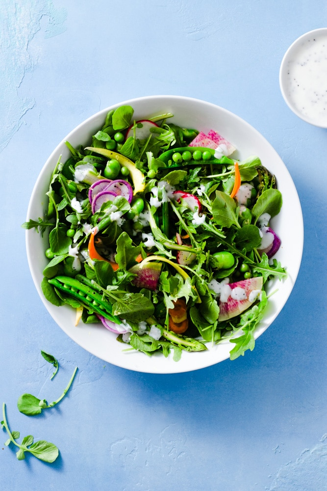 Overhead view of a spring vegetable salad with arugula, watercress, snap peas, English peas, fava beans, red radishes, purple radishes, watermelon radishes, carrots and asparagus with buttermilk poppy seed dressing on a light blue background.
