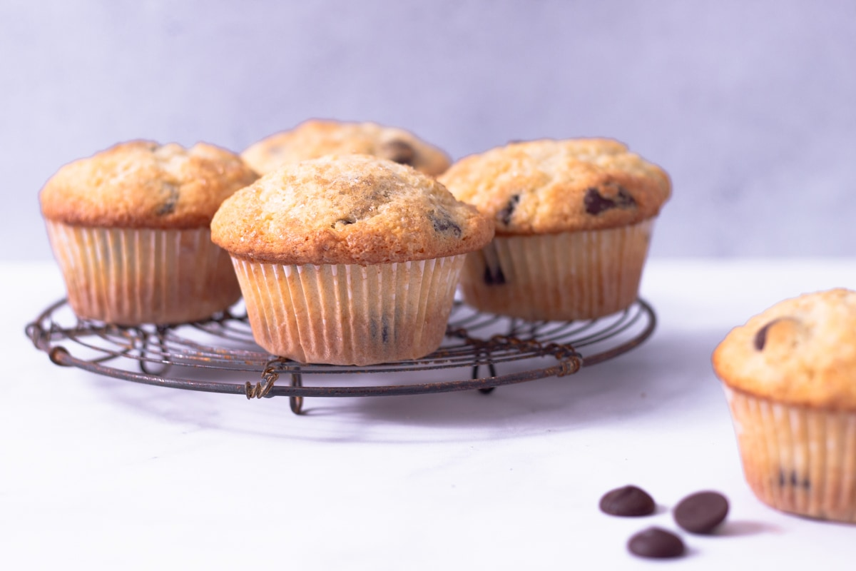 Straight on view of a cooling rack with Chocolate Chip Muffins on a white surface with a light blue background.