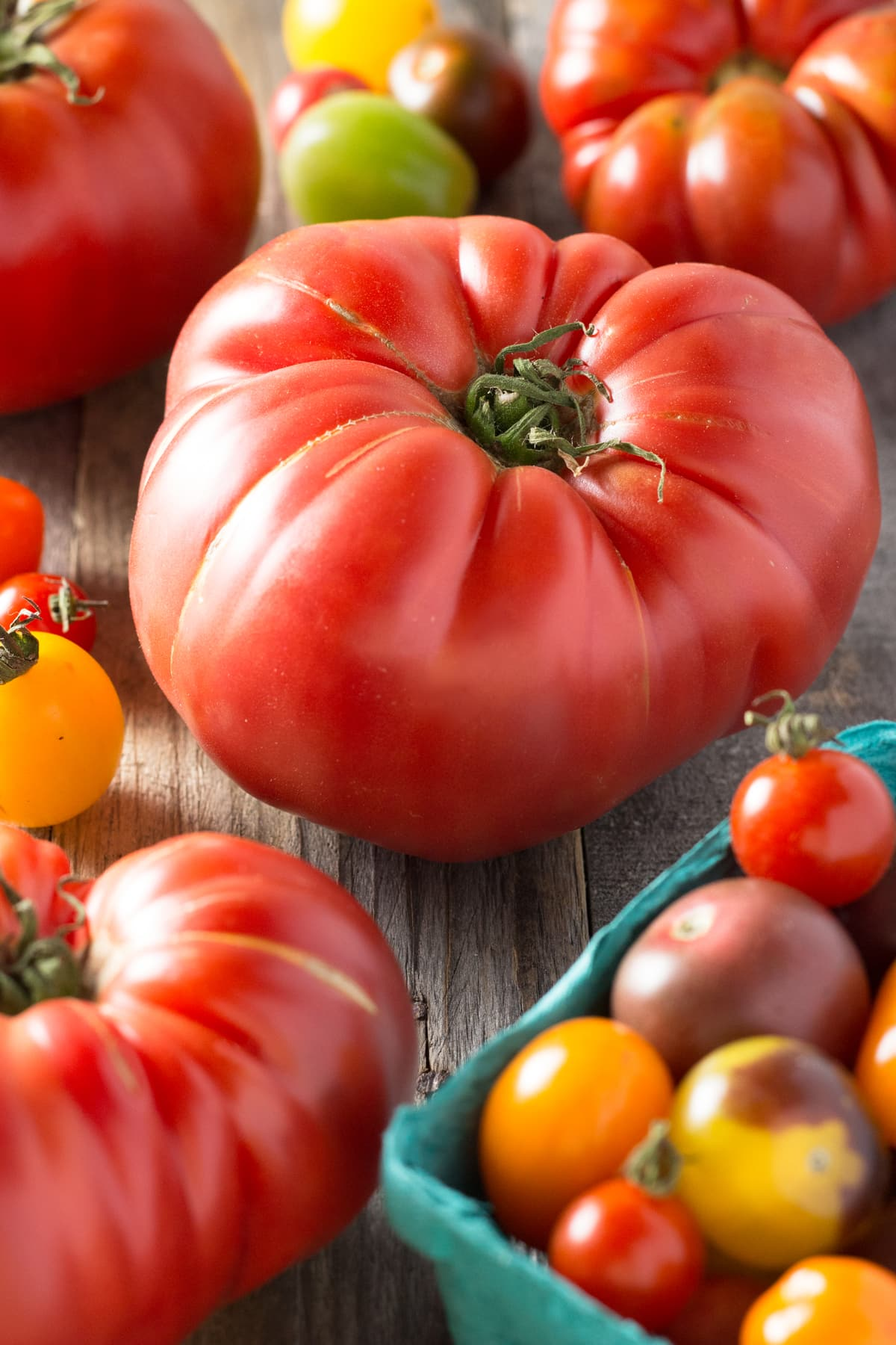 Angled view of an arrangement of large and small heirloom tomatoes on a wood surface.
