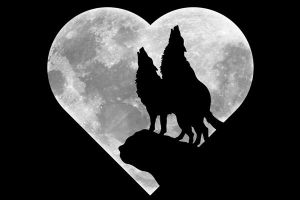 wolves with full moon heart