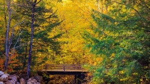 Autumn in New Hampshire – Must see places