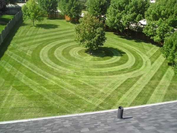 top cut lawn care servicetop