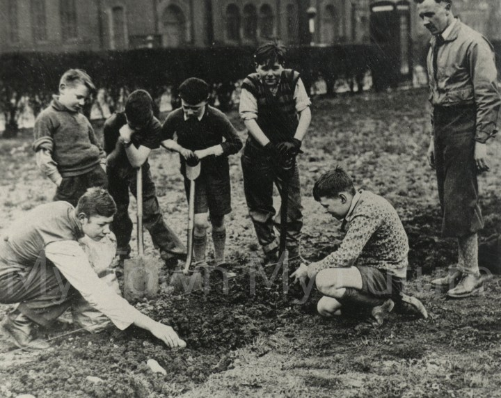 World War II,Archibald School,Teacher 'Stinker' Sterling ,Potato Planting,'Digging for Victory',Albert Park