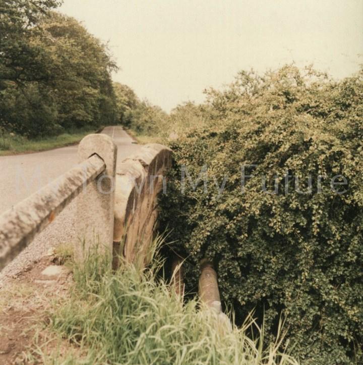 Nunthorpe,Tree Bridge