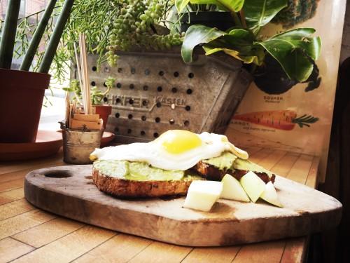 avocado on toast new york