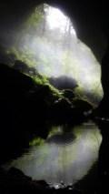 Charleston glowworm cave