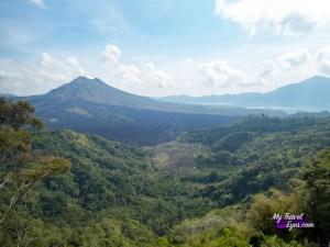 Deuxième étape: Ubud et ses alentours (5 jours)